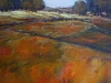 fields-of-color-acrylic-48x36-mya-louw