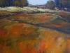fields-of-color-acrylic-48x36-mya-louw